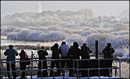 2011,1,1  소양5교에서 새해아침을 여는 사진가들