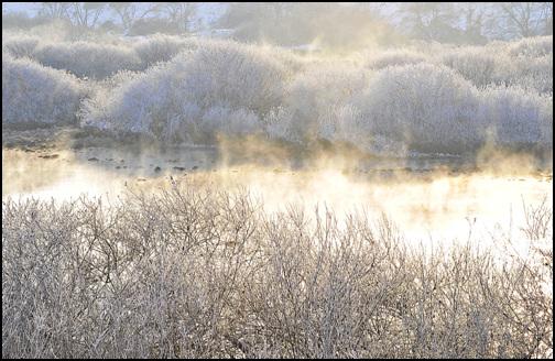 토끼의해 첫 날 햇살사이로 비추는 물안개와 상고대가 아름답습니다. 새해에는 좋은 일만 있기를 기원해 봅니다.