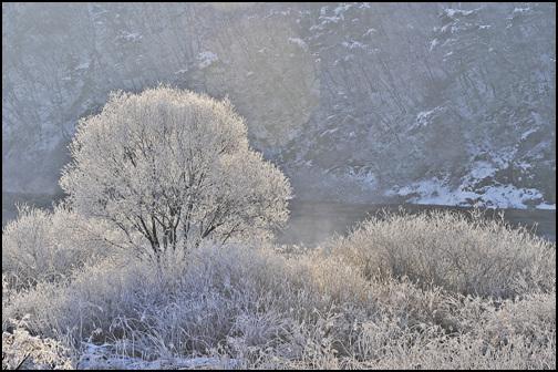 나뭇가지에 핀 얼음꽃,상고대