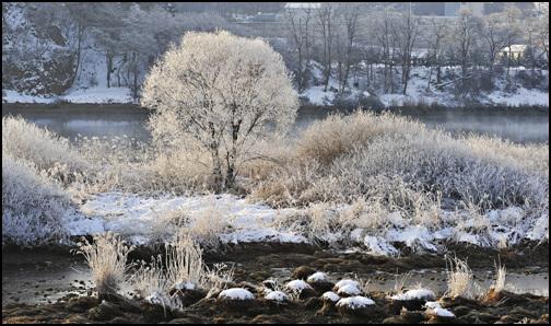 나뭇가지에 핀 아름다운 상고대