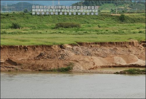4대강사업으로 동섬 주변의 유채꽃밭도 사라지고 있습니다.
