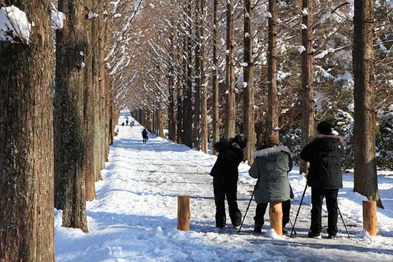 산포수목원의 설경 사진가들의 명소가 되었다.