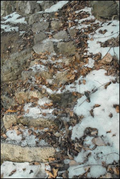 계단 눈과 낙엽을 치우면서 엉금엉금 기어 내려왔다