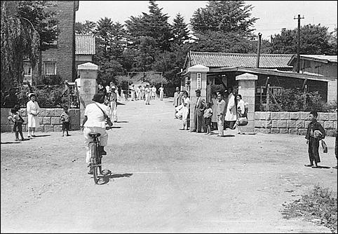 간호학교 체육행사 때 농촌 보건요원 활동에 필수였던 자전거 경기하는 모습(1956년). 격세지감을 느끼게 합니다.