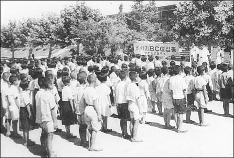개정초등학교 학생들 BCG접종 장면 (50년대 후반)