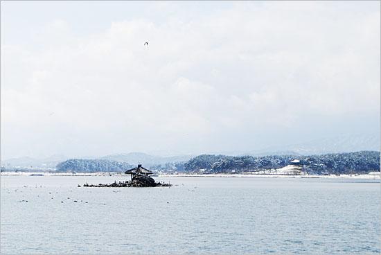 경포호 한가운데, 새바위 위에 올라앉은 월파정의 그림 같은 풍경. 멀리 오른쪽으로 보이는 누각이 '경포대'다.