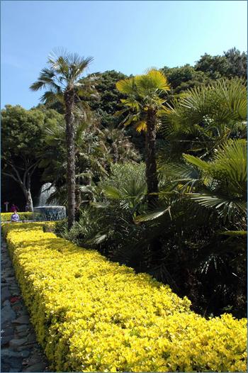 황금빛 관람로에는 이처럼 아름다운 나무로 장식돼 있다.