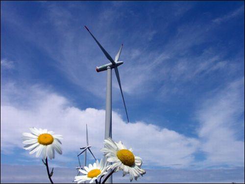 2010년, 역사상 최초로 재생에너지 발전량이 원자력을 뛰어넘었다. 에너지 체제 전환은 이미 현실이 되고 있다.