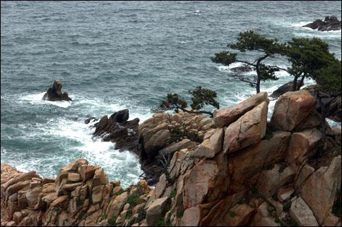 탕건암 탕건암은 넙디기 앞 바다에 있는 바윗돌로 마치 갓 속에 쓰는 탕건 같이 생겼다 하여 이름 붙인 것.