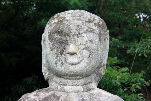 얼굴 육계가 낮아 민머리처럼 보인다. 얼굴은 둥근편이며 목에는 삼도가 뚜렷하다