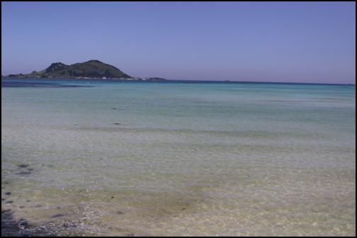 아침 바다 아침에 바다에 나가보니 바다 색깔이 또 달라졌다. 이쁘기만하다.