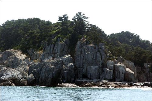 지심도 동백꽃 피는 지심도. 동쪽 해안은 바위와 절벽으로 비경이 아름답다.