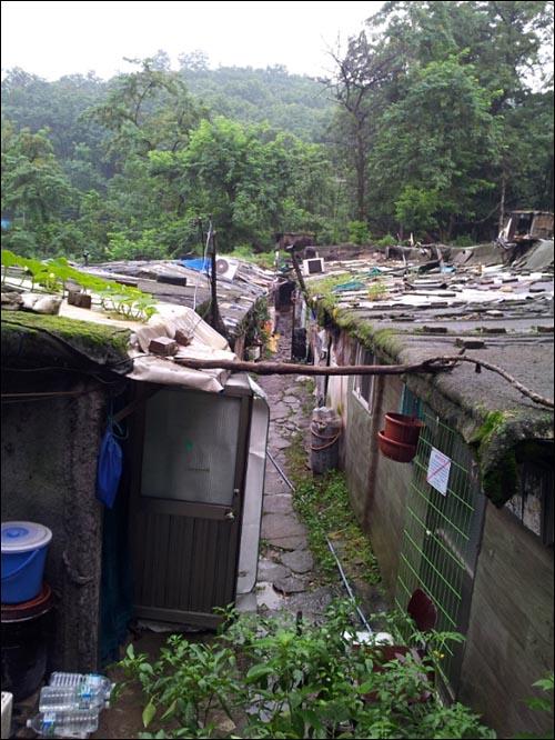 빽빽한 구룡마을 집들