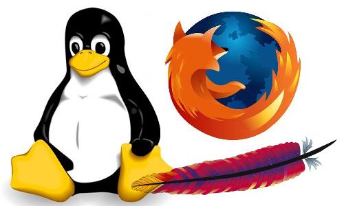 오픈소스 소프트웨어들 운영체제 리눅스, 웹 서버 프로그램 아파치, 웹브라우저 파이어폭스 등은 대표적인 오프소스 성공 사례입니다. 국내에서는 오픈소스에 기여하기 보다는 이를 가져와 직접 제작한 프로그램인 것처럼 속여서 팔고 있는 경우가 많습니다. 부끄럽게도 이런 기업들은 소스를 공개하지 않았다는 이유로 대대적인 소송을 당하고 있는 중입니다.
