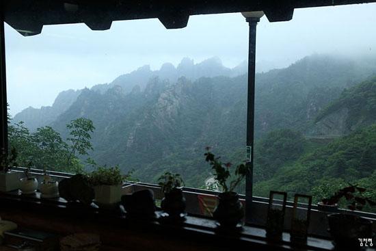 커피 한 잔 하며 휴게소에서 본 한계령의 비 오는 풍경