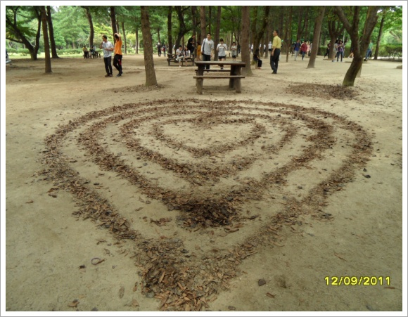 남이섬... 낙엽으로 만든 하트...
