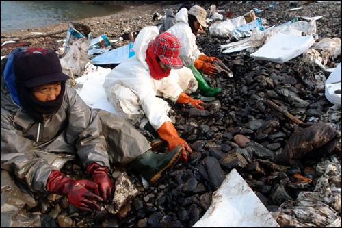 한겨울 기름 딲는 주민 지역주민들이 한겨울에 해변가 인근에서 자갈을 들춰가며 방제복을 입고 흡착포를 사용해 기름을 닦는 모습