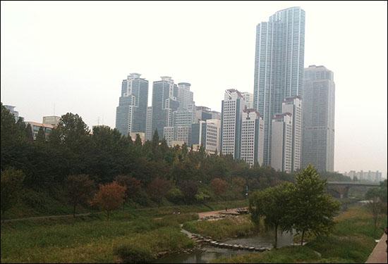 서울 강남구 도곡동의 고층 아파트촌.