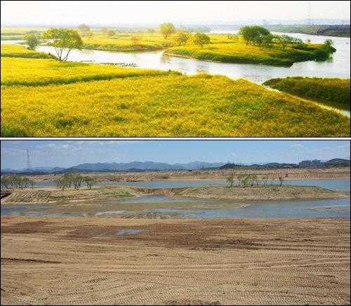 이게 바로 이명박 대통령의 영산강 동섬 보존 실체입니다. 참 잘 보존했네요. 왜 사람들이 2011년엔 동섬 이야기를 하지 않는지 그 이유를 잘 보여주고 있습니다.