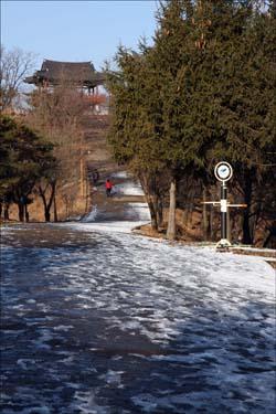 침산 정상부의 정자 '침산정'이 멀리 보이는 풍경. 침산 일대는 인근 주민들을 위해 공원으로 조성되어 있다.