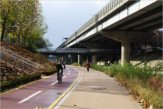 태릉 가는 길의 천변 자전거도로.