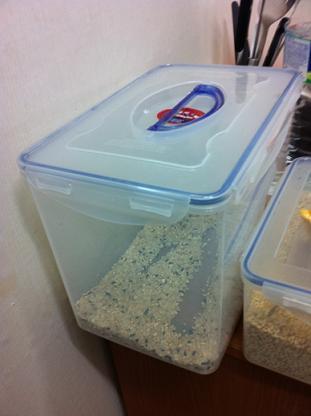 쌀 집에 쌀이 떨어진다는게 어떤 의미인지 몰랐었다. 이제는 안다.