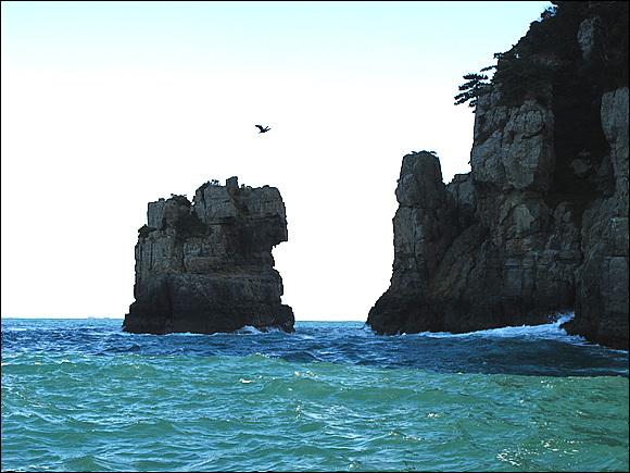 바다의 금강산이라 불리우는 해금강을 에돌아 관광을 하는데 세찬 풍랑으로 사진을 찍기가 쉽지 않다. 그래서 가장 아름다운 명소 십자굴을 관람하지 못한것이 안타깝기 짝이없다.