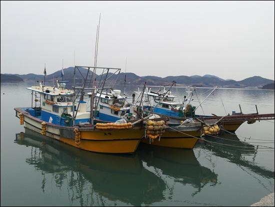 섬달천 포구에 여자만에서 키조개를 잡는 어선들이 부두에 정박되어 있다.
