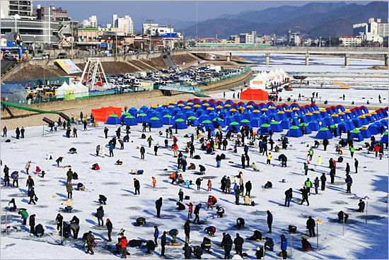 황금송어축제 행사장 전경.