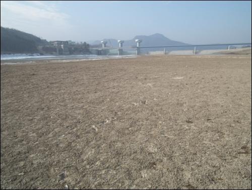 상주댐 안에 드넓게 펼쳐진 모래 운동장입니다.  모래를 열심히 퍼냈는데... 이렇게 드넓은 모래가 퇴적되었습니다.