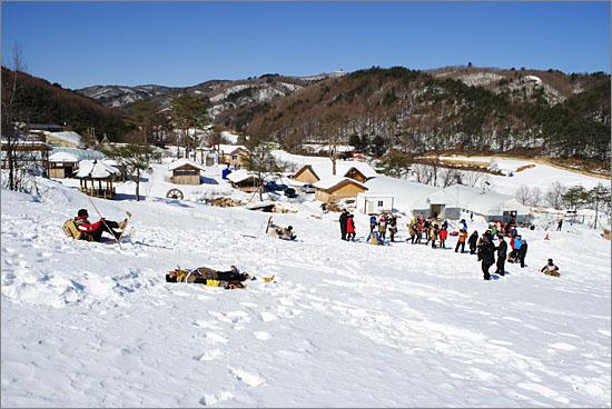"""""""더 이상 못 가."""" 달리기를 포기하고 아예 눈밭에 드러누운 선수들."""