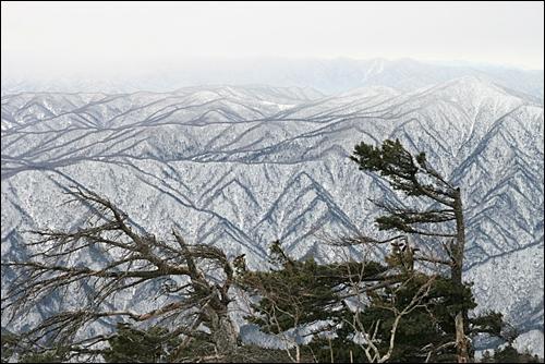겨울 설악산은 나를 보고 말 없이 살라고 속삭인다.