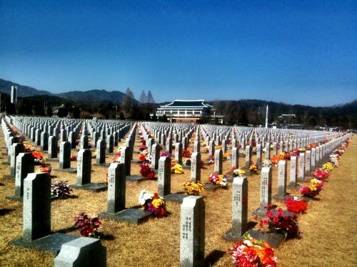 1년 전 까지만 해도 많이 비어있던 대전 현충원 윤 하사 주변 묘역에는 그새 순국 영령의 새 묘비들이 빽빽이 들어섰다.