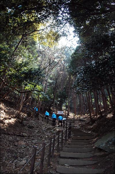 내도명품길 내도명품길 들머리로 접어들자 울창한 숲을 이룬 숲길이 나온다.