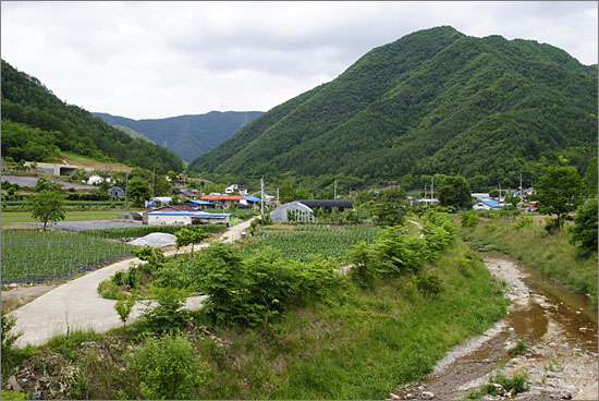 미탄면 면사무소 근처 마을 풍경. 오른쪽으로 흐르는 하천이 창리천.