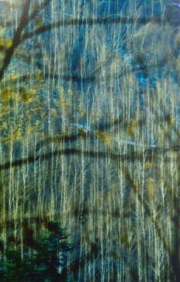 낙엽이 져버린 앙상한 자작나무를 하나하나 그렸다는 <자작 숲 그리기>