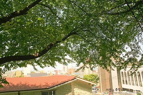 월명공원 점방산 전망대 가는 길 월명공원 점방산 전망대 가는 길
