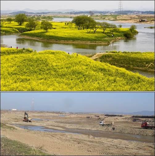 영산강의 제1 비경 동섬이 이명박 대통령의 4대강 사업 덕에 이렇게 사라졌습니다.