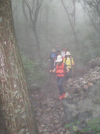 운무 속의 걷기 짙은 구름과 안개가 석여 몽환적인 느낌을 주는 길을 걸었다.