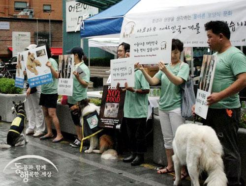 2012년 초복 동물단체의 행사 사진. 동물과 함께 행복한 세상, 동물학대방지연합, 동물보호시민단체 '카라' 등이 함께 했다.