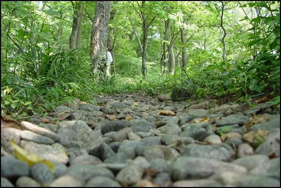 조약돌 깔린 숲길입니다. 신발 벗고 맨발로 걷고 싶습니다