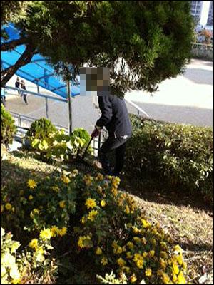 한 여성 조무원이 학교 정원을 관리하고 있다.