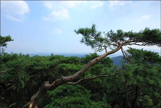 봉명산 정상(408m)에 서면 다도해의 풍경이 펼쳐진다.