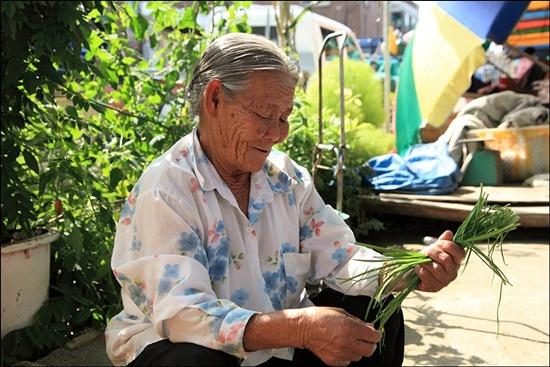 완사5일장이 설 때마다 시장에 나오는 김정년 할머니(82)는 아직도 비녀를 꽂은 쪽머리를 하고 있다