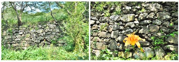 석축 창성사지 안에 있는 석축. 막쌓기를 한 석축으로 보아, 그리 크지 않은 절이었음을 알 수 있다