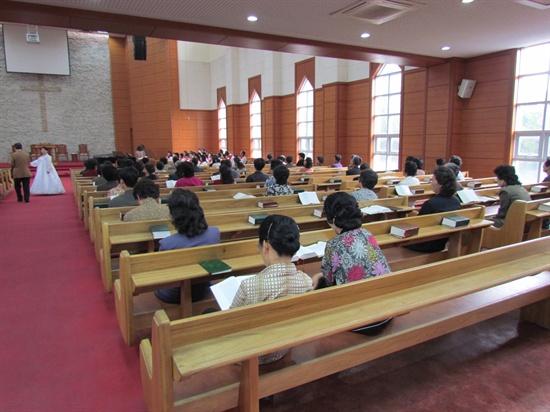 예배를 기다리는 신도들이 성경을 읽고 있다.