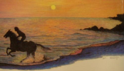 김일광 선생님의 <조선의 마지막 군마> 뒤 표지 사진입니다. 말이 달릴 때는 앞발과 뒷발이 짝으로 움직입니다. 말 사진은 달리고 있는 모습입니다.