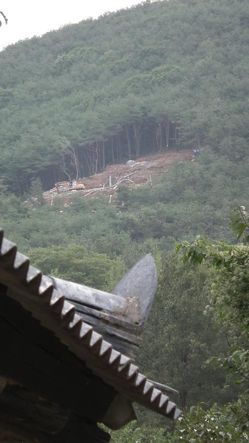집 바로 뒷산에 초고압 송전탑이 삼평1리 한 주민의 마당에서 본 24호기 송전탑 공사 현장의 모습. 공사현장과는 직선거리로 100미터도 채 떨어지지 않았다.