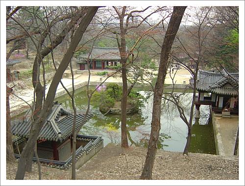 창덕궁후원 부용지 영역  명옥헌원림의 큰 연못을 보면 부용지 영역이 보인다