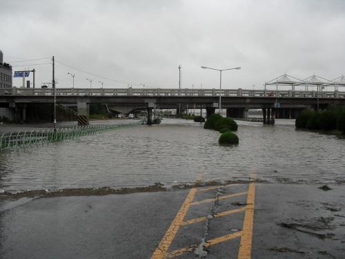 태화강 울산교 아래 간선도로가 태화강이 넘치는 통에 물에 잠겨 차량 운행이 금지됐다.